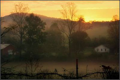 Photograph - Farm Horse Morning by Kathy Barney
