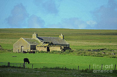 Digital Art - Farm House In Orkney Scotland by Eva Kaufman