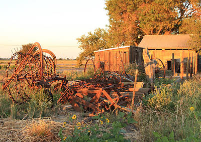 Antique Hay Rake Photograph - Farm Implements by Troy Montemayor