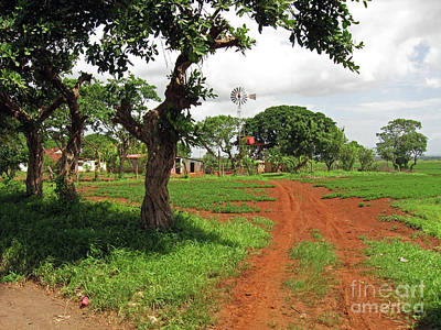 Photograph - Farm In Nicaragua by Lydia Holly