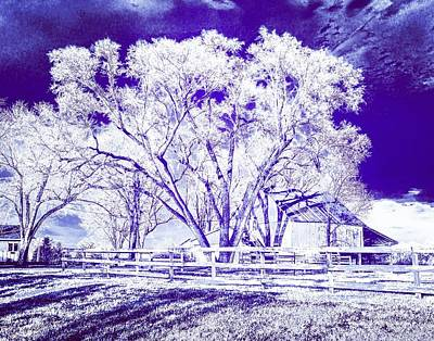 Photograph - Farm In Suburbia With Wildcat Flare by Michael Oceanofwisdom Bidwell