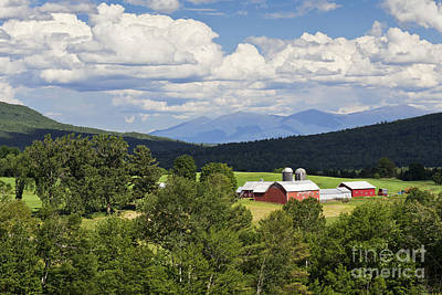 Photograph - Farm In Summer Landscape by Alan L Graham