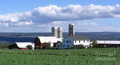 Photograph - Farm In The Finger Lakes Region Of New York State by Rose Santuci-Sofranko