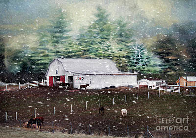Photograph - Farm Life by Darren Fisher