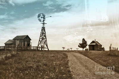 Photograph - Farm Life by Sharon Seaward