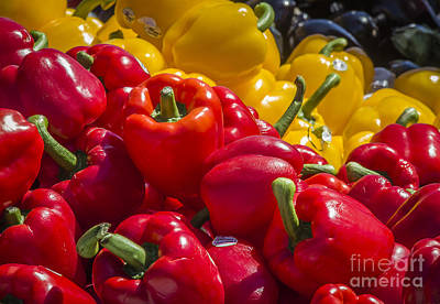 Photograph - Farm Market Peppers by Joann Long