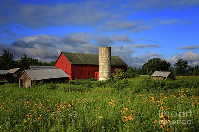 Photograph - Farm Morning by Rachel Cohen