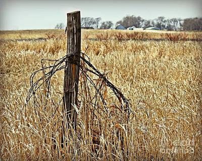 Photograph - Farm Near Marsh by Kathy M Krause