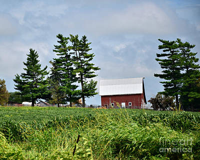 Photograph - Farm Near Shenandoah by Kathy M Krause