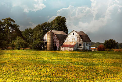 Photograph - Farm - Ohio - Broken Dreams by Mike Savad