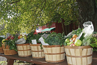 Photograph - Farm Picked Groceries by Margie Avellino