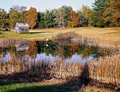 Photograph - Farm Pond by John Meader