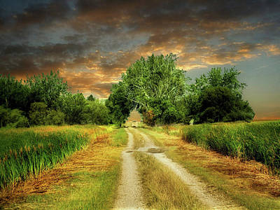 Photograph - Farm Road 2 by William Tanata