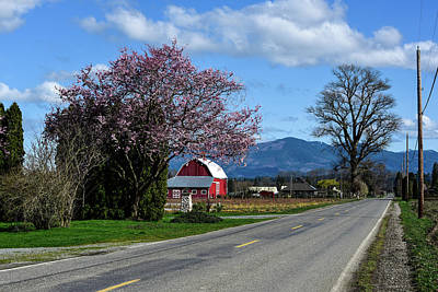 Photograph - Farm Road In Spring by Tom Cochran