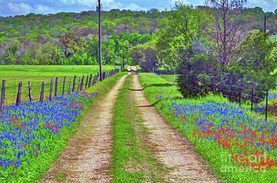 Photograph - Farm Road by Savannah Gibbs