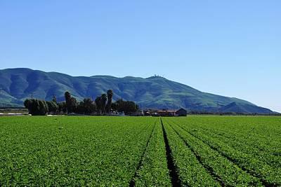 Photograph - Farm Rows - Mountain View by Matt Harang