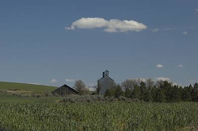 Photograph - Farm by Sara Stevenson