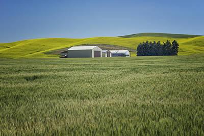 Photograph - Farm Scene Palouse Wa Dsc04396 by Greg Kluempers