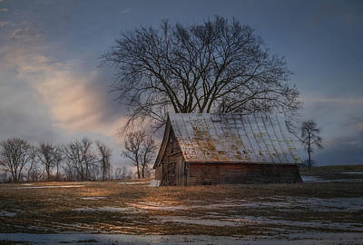 Farm Shed 2016-1 Art Print by Thomas Young