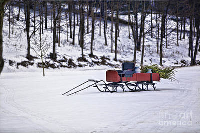 Photograph - Farm Sleigh by Nicki McManus