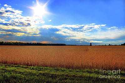 Photograph - Farm Splendor by Cathy  Beharriell