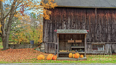 Farm Stand Etna New Hampshire Art Print by Edward Fielding