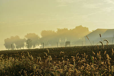 Photograph - Farm Sunrise #4 by Tana Reiff