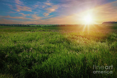 Photograph - Farm Sunrise by Verena Matthew