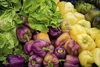 Photograph - Farm To Market Produce - Lettuce And Bell Peppers by Lynn Bauer