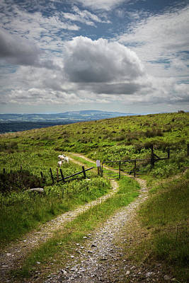 Photograph - Farm Trail Along The Wicklow Way by Debra and Dave Vanderlaan