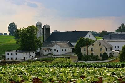 Photograph - Farm Valley by Tana Reiff