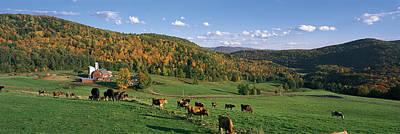 Barn Animal Photograph - Farm Vt Usa by Panoramic Images