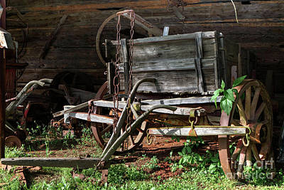 Photograph - Farm Wagon by Rick Mann