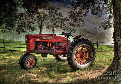 Farmall In The Field Print by Michael Eingle