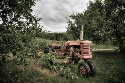 Autumn Scene Photograph - Farmall Tractor On A Farm  by Joann Vitali