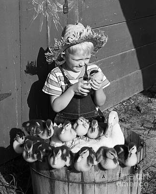 Pet Care Photograph - Farmboy With Ducklings, C.1950s by D. Corson/ClassicStock