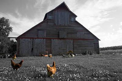 Photograph - Farmer John's by Dylan Punke