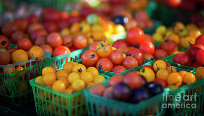 Christina Conway Royalty-Free and Rights-Managed Images - Farmers Market Tomatoes by Christina Conway