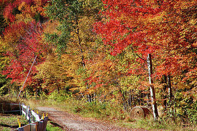 Photograph - Farmers Path Of Fall Colors by Jeff Folger
