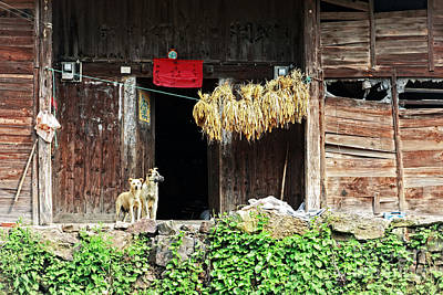 Photograph - Farmhouse In Rural Guizhou by Charline Xia