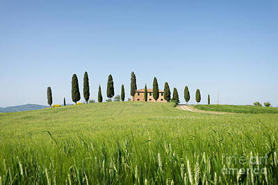 Photograph - Farmhouse With Cypress Trees And Crops In Tuscany by IPics Photography