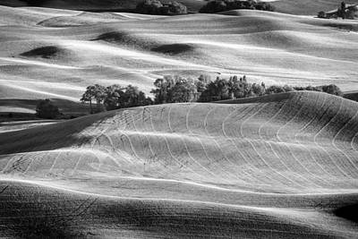 Photograph - Farming On Carpet II by Jon Glaser