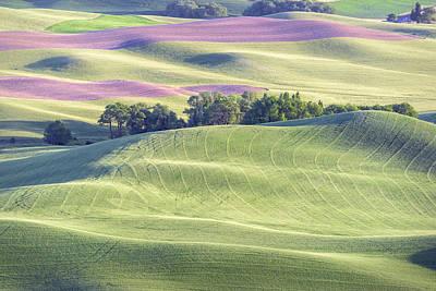 Horizontal Photograph - Farming On Carpet by Jon Glaser