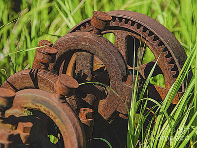Photograph - Farming Rusty Gold by JRP Photography