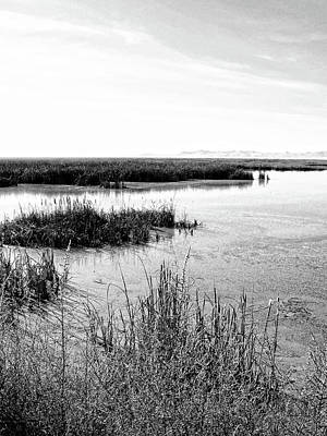 Photograph - Farmington Bay View Bw by David King