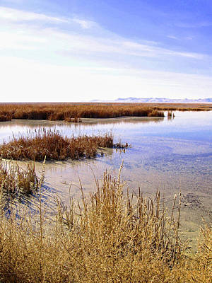 Photograph - Farmington Bay View by David King