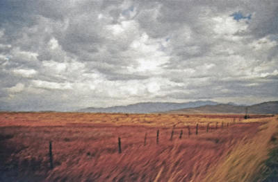 Farmland 2 Art Print by Steve Ohlsen