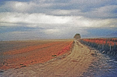 Country Dirt Roads Mixed Media - Farmland 3 by Steve Ohlsen