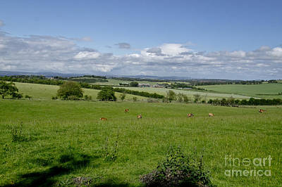 Farmland In Beecraigs. Art Print