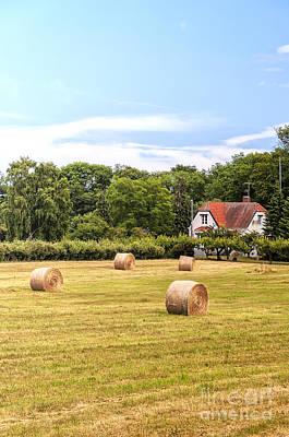 Farmland In Sweden Art Print